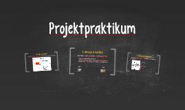 Projektpraktikum