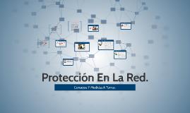 Protección En La Red.
