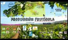 Circuito Productivo Frutícola del Alto Valle agustin.M