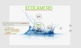 Eco-calentador