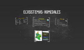 ECOSISTEMAS: HUMEDALES