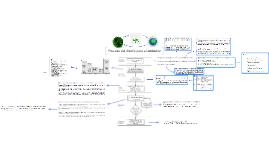 Copy of Proceso del diseño para el ambiente