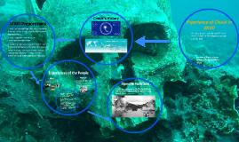 Experience of Chuuk in WWII