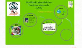 Realidad Laboral de la Licenciada en Enfermería de la C.N.S.