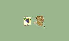 Copy of Brasilia