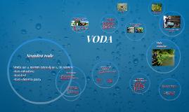 Copy of VODA