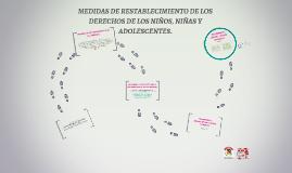 MEDIDAS DE RESTABLECIMIENTO DE LOS DERECHOS DE LAS NIÑAS, NI