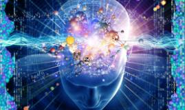 Integración de Imágenes de Neuro
