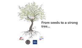 From seeds to a strong tree....