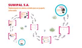 Implementación sistema contable SUMIPAL S.A.