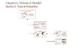 6.5 Traits & Probability
