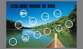 ECOLODGE MADRE DE DIOS