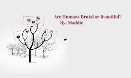 Are Humans Brutal OR Beautiful?
