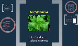 Copy of Hierbabuena