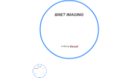 BRET IMAGING