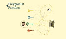 Polygamist Families