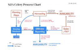 S&A Celery Process Chart
