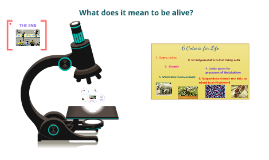 Hum Phys:What does it mean to be alive?