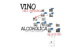 quimica organica (fermentacion alcoholica)