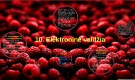10. Elektroninė valdžia