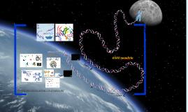 DNA Winding Unwinding Nucleosome