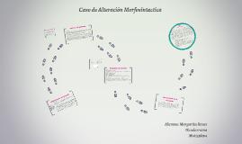 Caso Alteraciones Morfosintactica