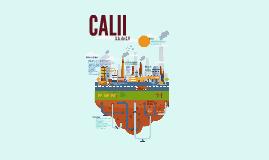 CALII S.A de C.V