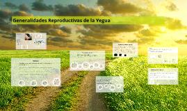 Generalidades Reproductivas de la Yegua