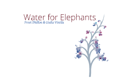 Water for Elephants Seminar