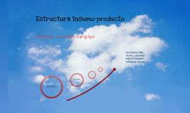 Estructura Insumo-producto