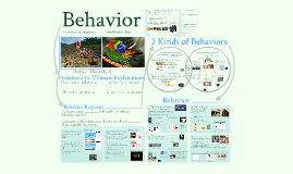 Chapter 51: Animal Behavior (Blank)