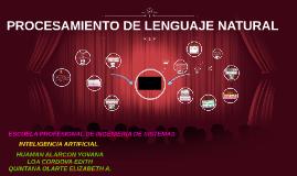 Copy of Copy of Copy of PROCESAMIENTO DE LENGUAJE NATURAL