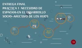 Copy of NECESIDAD DE ESPACIOS EN EL DESARROLLO SOCIO AFECTIVO DE LOS