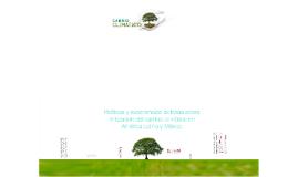 Políticas y experiencias exitosas sobre mitigación del cambio climático en América Latina y México