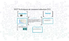 DUT Techniques de commercialisation (T.C)