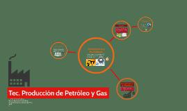 Características y Posibilidades del Sector Petrolero