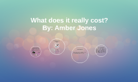 What does it really cost?