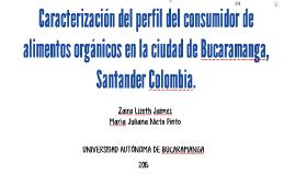 Caracterización del perfil del consumidor SEMINARIO