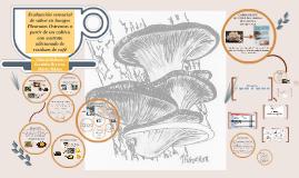 Evaluación sensorial de sabor en hongos