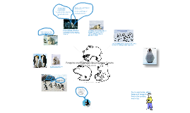 Penguins and Polarbears Do Live in the Tundra!