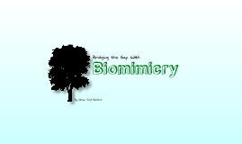 Copy of Bridging the Gap with Biomimicry