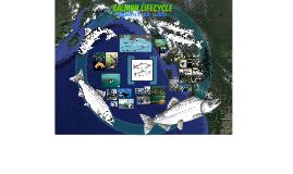 Salmon Lifecycle