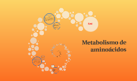 Copy of Metabolismo de aminoácidos