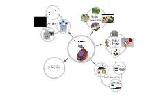 Presentazione Robotica BIA