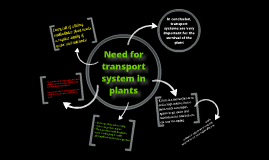 Need for a transport system in a plant