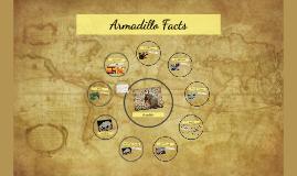 red yellow and orange Armadillo