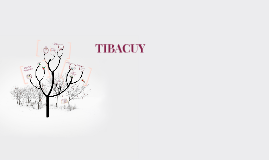 TIBACUY