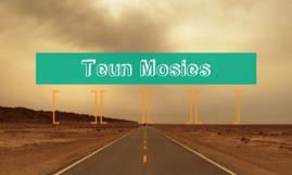 Teun Mosies