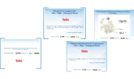 Presentación FAO - Brasil