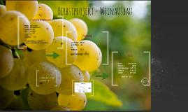 Herbsthausaufgabe- Weinausbau_Nathalie Klein
